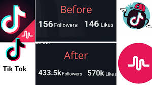 Tips And Tools To Build And Increase Tiktok Followers / Fans